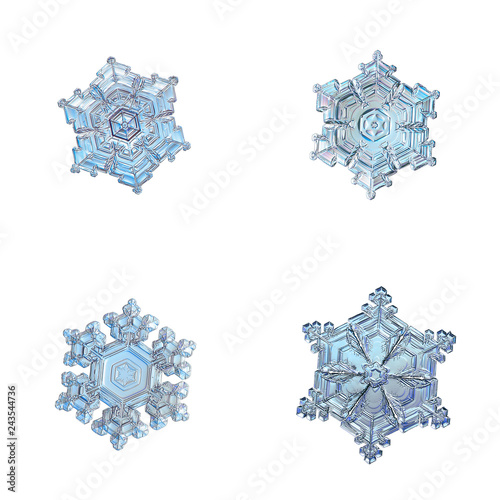 Four snowflakes isolated on white background. Macro photo of real snow crystals: elegant star plates with relief surface, short arms, fine hexagonal symmetry, ornate shapes and complex inner patterns.