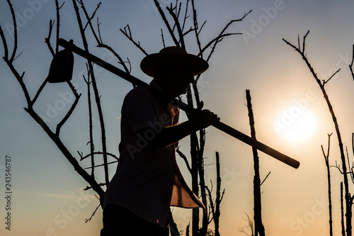 Fotografie, Obraz  silhouette of man with hoe, background with dry trees and sky without clouds and
