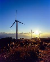 Wind Power Generator And Sunrise - 風力発電機と朝日