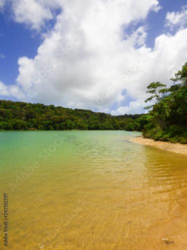 Fotografia  A view of Lagoa da Mata, beautiful lagoon surrounded by preserved Atlantic Fores