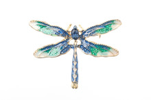 Dragonfly Enamel Brooch Isolat...