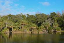 Reflection Of Shoreline At Kat...