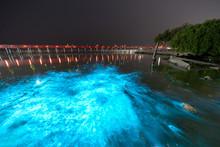 Bioluminescent Plankton Light ...