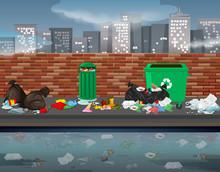 Litter In The Urban Landscape