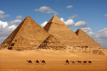Pyramids Giza Cairo In Egypt W...