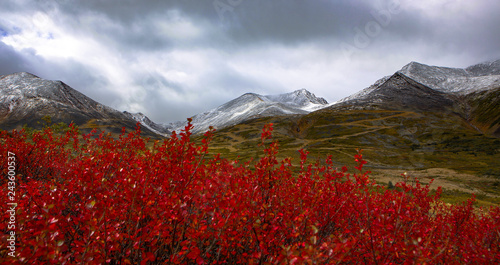 Foto op Canvas Rood paars Indian Summer in Kanada