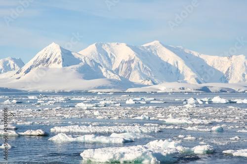 Fotografía Antarctic icebergs in the waters of the ocean
