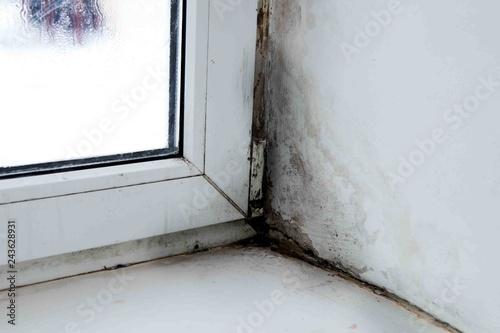 mold in the corner of the window Fototapet