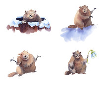 Happy Groundhog Day - Hand Drawn Watercolor Collection Illustrations Character Card Groundhog