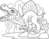 Fototapeta Dinusie - cartoon predatory dinosaur spinosaurus, coloring book, funny illustration
