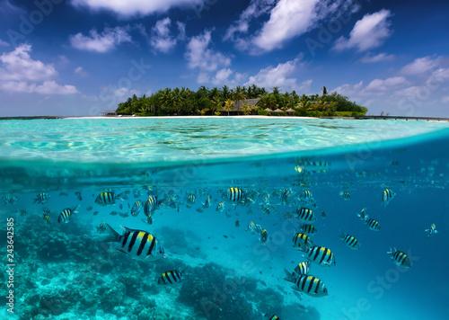 Tropische Insel auf den Malediven mit bunter Unterwasserwelt, Fischen, Korallen und blauem Himmel