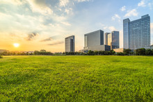 Green Lawn With City Skyline Background, Shanghai China