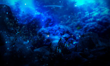 The Depth Of The Sea Water, Th...