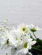 White flowers on light background