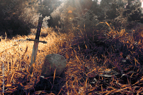 Fotografie, Tablou  mysterious and magical photo of silver sword over England woods or field landscape with light flare
