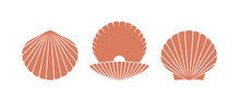 Scallop Logo. Isolated Scallop...