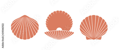 Fotografia Scallop logo. Isolated scallop  on white background