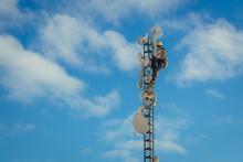 Telecom Worker Repairing Anten...