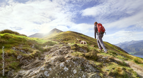 A hiker walking up a mountain ridge, The Edge, towards Ullock Pike, Carl Side and Skiddaw in the English Lake District UK Wallpaper Mural