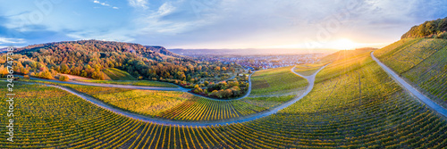 Germany, Baden-Wuerttemberg, Aerial view of Korber Kopf, vineyards at sunset in autumn, panorama - 243674738