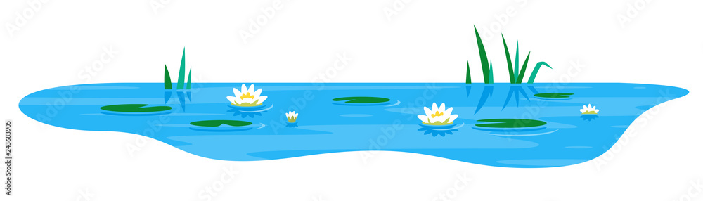 Fototapety, obrazy: Small blue decorative pond with white water lily and bulrush plants, isolated on white, lake plants nature landscape fishing place