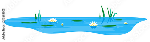Fotografía Small blue decorative pond with white water lily and bulrush plants, isolated on