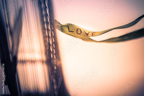 Amor ao vento Wallpaper Mural