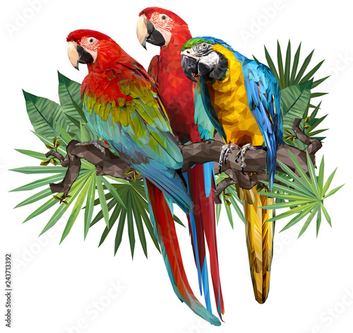 Illustration drawing of green wing macaw birds. Fotomurales
