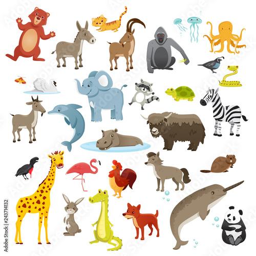 Cartoon animals collection #243714132