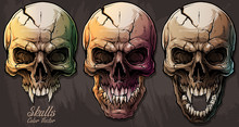 Detailed Graphic Realistic Cool Colorful Human Skulls With Sharp Canines And Cracks. On Gray Grunge Background. Vector Icon Set.