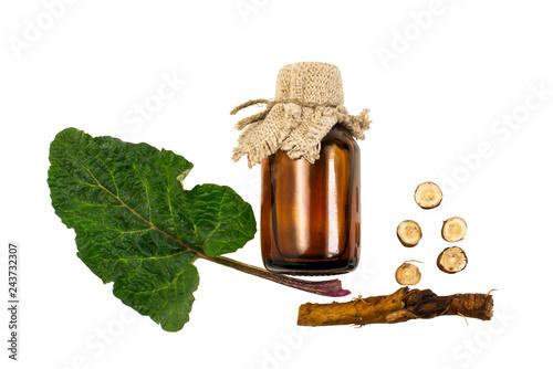 Photo Burdock (Arctium lappa), leaves and root, burdock oil in bottle