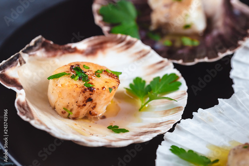 Canvastavla Seared scallops shell with butter, garlic and parsley.