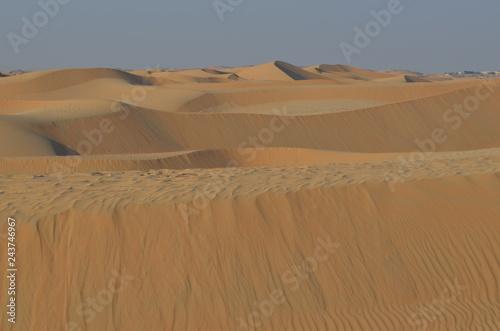 Poster de jardin Desert de sable Desierto