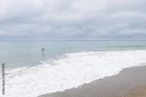 Photo  Pacific ocean coastline in Ventura County, California
