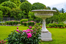 Antique Vase And Peonies In The City Garden. Ancient Greek Style Statue. Marble, Stone Material. Beautiful Unique Garden Design. Blossoming Flowers, Trees, Bushes. Summertime Photo For Print, Poster