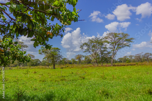 Cadres-photo bureau Campagne beautiful landscape sky and clouds in venezuela