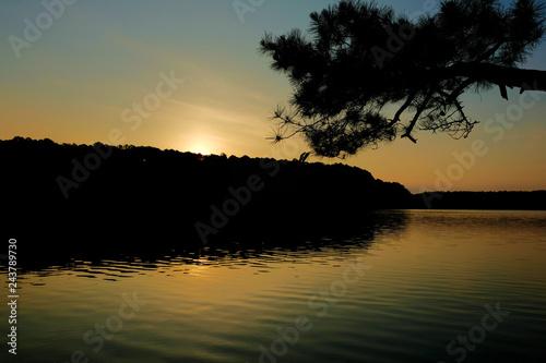 Αφίσα  View of the water just before the sun peeks over the horizone at dawn at Lake Johnson Park in Raleigh North Carolina