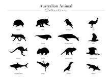 Australian Animal Collection