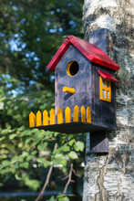 Bird House With Red Roof, Yellow Window And Fence On Birch Close Up. Vertical Image