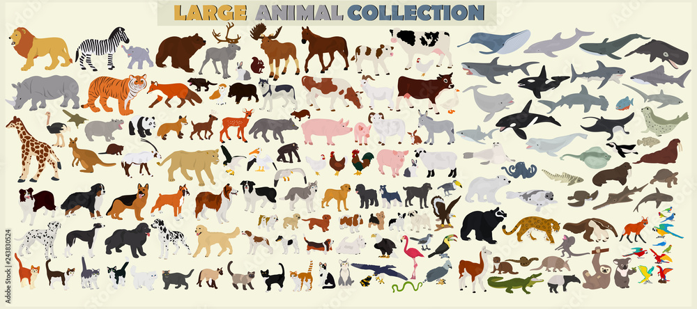 Fototapety, obrazy: A large set of animals of the world on a light background.