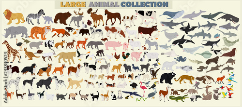 Photo  A large set of animals of the world on a light background.