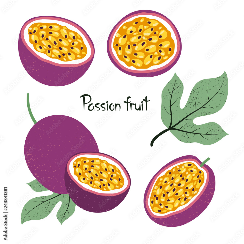 Fototapeta Set of passion fruit isolated on white. Vector illustration.