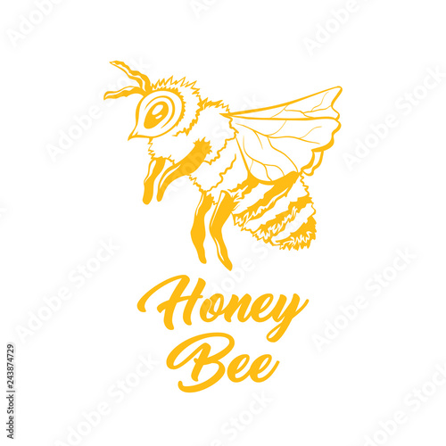 Honey Bee Outline Logo Design Isolated Vector Yellow Engraved