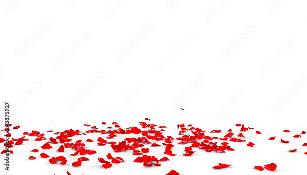 Fototapety, obrazy: Many rose petals fall on the floor