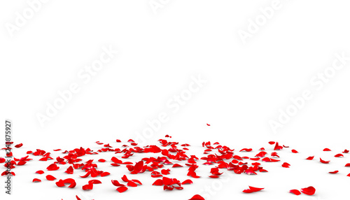 obraz lub plakat Many rose petals fall on the floor