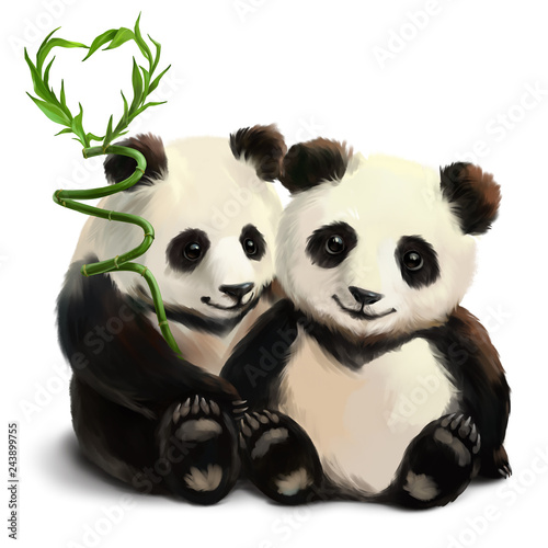 Two pandas and a bamboo branch Wallpaper Mural