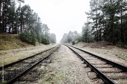 Misty railroad in the evening, pine trees in the background, Latvia