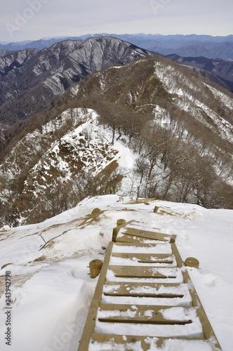 雪の檜洞丸 丹沢主稜の木道 Canvas Print