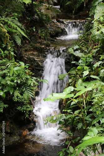 This waterfall is in the mountains of Costa Rica.