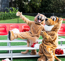 Two Cougar Mascots On Small Bl...